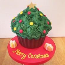 Christmas Cakes & Cupcakes